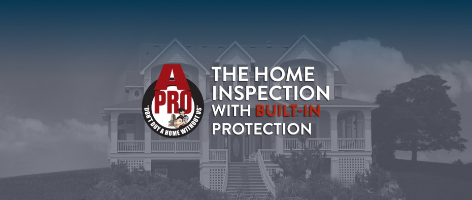 Franchise winter home inspection