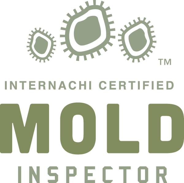 Franchise mold inspection near me
