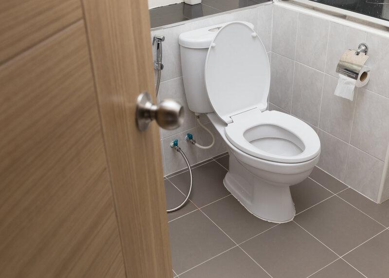 Toilet Inspection Franchise